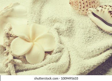 spa concept with flowers