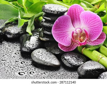 spa concept of orchid flower and spa stones