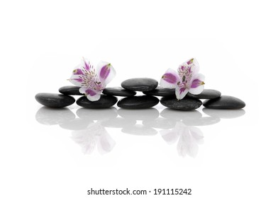 Spa concept with two pink orchid on stone with reflection