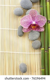 spa frame from â?? bright orchid and stones with thin bamboo grove