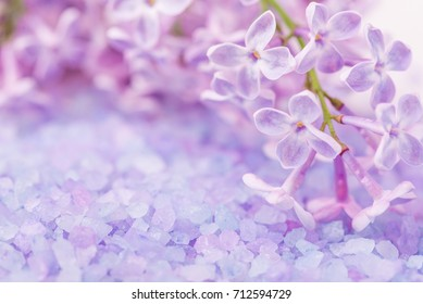 Spa sea salt and flower branch for bath. Natural health care. Beauty, healthy therapy. Gray background. Fresh relax for body. Treatment for relaxation and wellness. Closeup aroma crystal.
