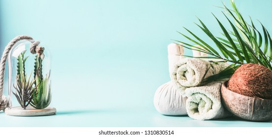 Spa setting background. Massage treatment. Rolled towels, compress balls with coconut, palm leaves and various succulent plants in glass at light blue background. Beauty, wellness and body care. Frame