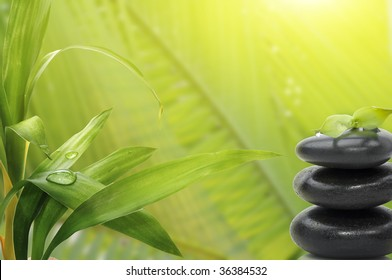 Spa still life , with bamboo leafs and massage stones