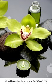 Spa still life with green orchid ,fern leaves and stones reflection