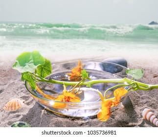spa still  life on ocean beach