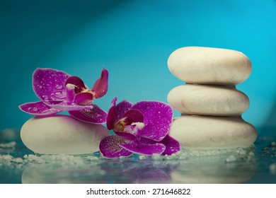 Spa still life with pink orchid and spotlight