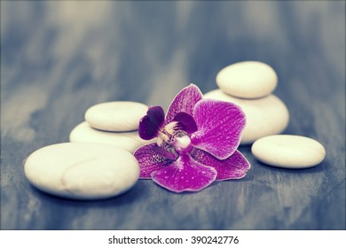 Spa still life with pink orchid and white zen stones - retro styled photo