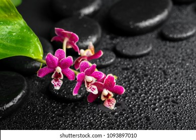 spa still life of zen massaging stones with drops, red orchid (phalaenopsis) and green leaves, copy space