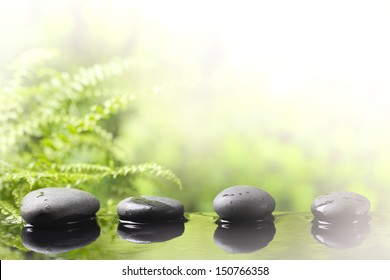 Spa still life with zen stone and grass