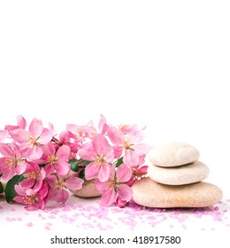 Spa with stone, rock for zen, beauty, balance, wellness, flower branch on white background. Concept of health, therapy, relaxation. Massage treatment for tranquil and harmony