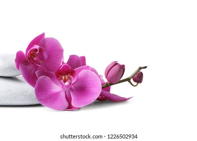 Spa stones and orchid flowers on white background