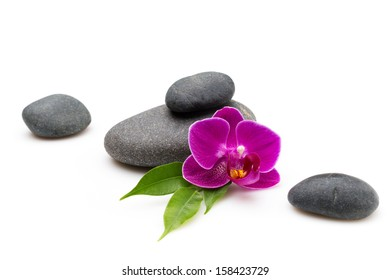 Spa stones and pink orchid isolated background.
