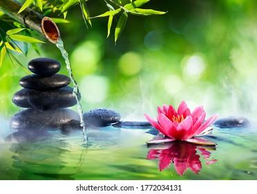 Piedras De Spa Y Waterlily Con Fuente En Zen Garden