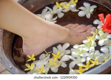 Spa therapy woman soak her feet in a bowl of water with many flowers for water therapy.