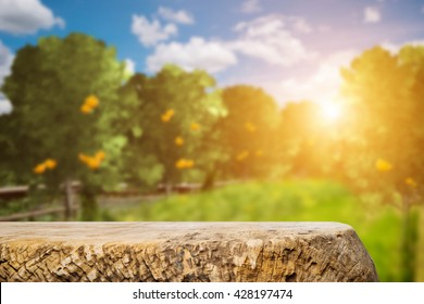 Space of old wood table over orange trees, orange field background. For product display.