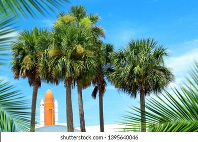 Space rocket and palm trees over blue sky in Florida, USA