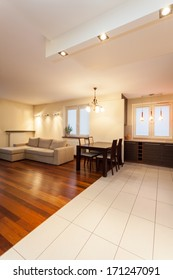 Spacious apartment - living room and dining room