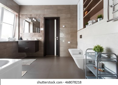 Spacious bathroom with toilet, bidet and washbasin in brown tones