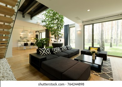 Spacious and elegant modern living room with comfortable sofa and big window