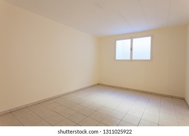 Spacious empty cellar. It consists of a window and a light tiled floor