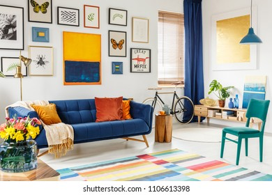 Spacious living room interior with a blanket and orange pillows on a blue sofa, green chair, colorful rug and gallery of posters and painting on white wall. Real photo