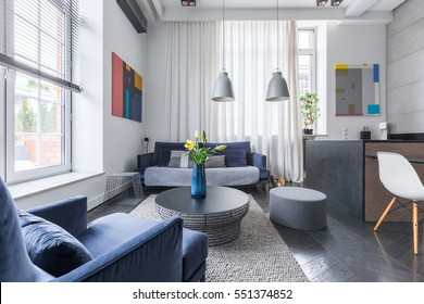 Spacious living room with upholstered blue sofa and armchair