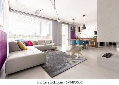 Spacious open plan modern living room interior with concrete fireplace, big comfortable sofa, dining space and kitchen