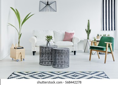 Spacious room with designed with scandinavian style