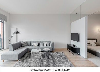 Spacious white and gray living room with television screen next to bedroom