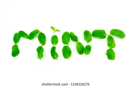 Spaermint, pepermint isolated on white background