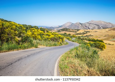 spain; andalusia; malaga; village; field; green; hill; landscape; mountain; nature; outdoor; panorama; picturesque; province; rural; scenic; spanish