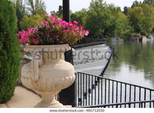 Anfore Con Fiori.Spain Aranjuez Anfora Con Fiori Amphora Stock Photo Edit