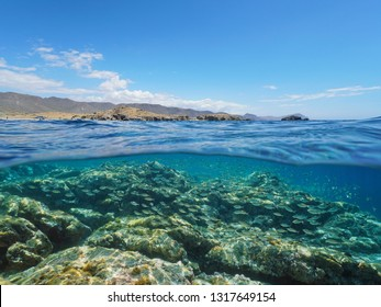 Spain Cabo de Gata Nijar coast with school of fish and rocky seabed underwater, Mediterranean sea, Almeria, Andalusia, split view half over and under water