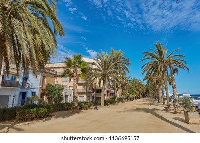 SPAIN, Calella - SEPTEMBER 15, 2016: Palm tree walkway against the blue cloudless sky in the afternoon in Calella, Spain.