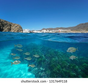 Spain coastal village with fish and seagrass underwater, Mediterranean sea, La Isleta del Moro, Cabo de Gata Nijar, Andalusia, Almeria, split view half over and under water