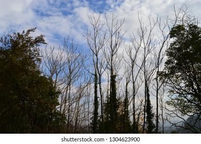 spain country landscape