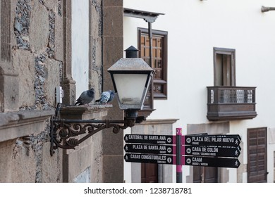 Spain, Las Palmas de Gran Canaria. November, 6 th 2018. Pigeons on a cornice in Vegueta.