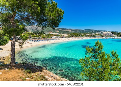 Spain Majorca beach Platja des Carregador Palmanova, Mediterranean Sea, Balearic Islands.