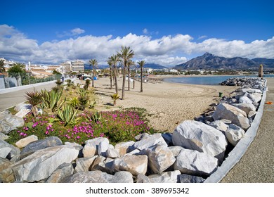 Spain, Marbella, Puerto Banus, holidays scenery, beach on Costa del Sol with flowers, cactuses, palm trees