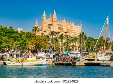 Spain, Palma de Majorca port marina with view of the famous Cathedral church La Seu, Mallorca Balearic Islands, Mediterranean Sea.