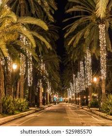Spain Palma Majorca old town center, palms alley passeig de sagrera at night, illuminated at Christmas.