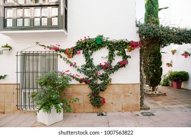 Spain streets with flowers in Spain