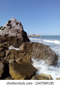 Spalashes of water on sidebank's rocks. And a gull seating on top of one rock. Clear sky and rumbling tide.
