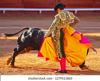 The Spanish Bullfight