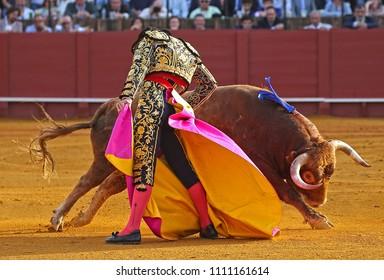 Spanish Bullfight, brave bull and bullfighter