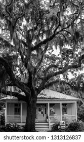 Spanish moss on tree above single story home in Beaufort, South Carolinna shot in black and white