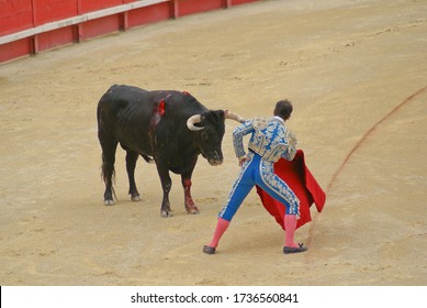 Spanish torero matador bullfighter performing a traditional classic bullfight at a big arena Spain