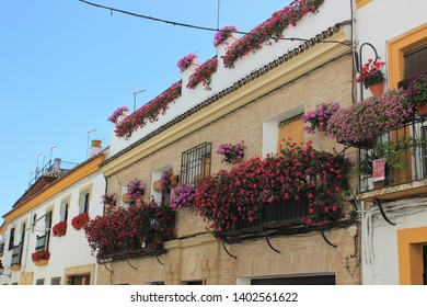 Spanish windows with red flowers