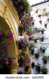 spanish yard with flowers and flowerpots hanging