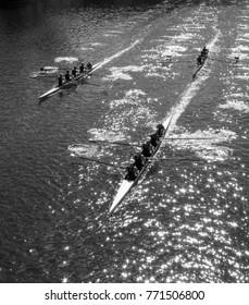Sparkling Rowing Regatta